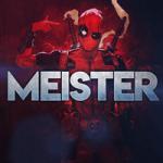 MEIST3R